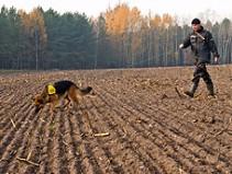 Die Sucharbeit kommt dem Naturell des Hundes von allem am nächsten. Was liegt also näher, als das am besten entwickelte Organ - den Geruchssinn unserer Hunde - zur Auslastung und Beschäftigung