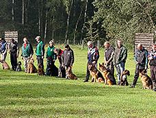 schaeferhund10