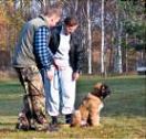 schaeferhund24