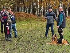 schaeferhund9