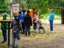 Wandertag Grundschule Rothenburg